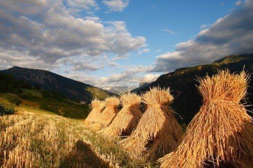 Natur, Erlebnis und Entspannung - Ein Urlaub am Eingang zum Grödnertal wird Sie begeistern